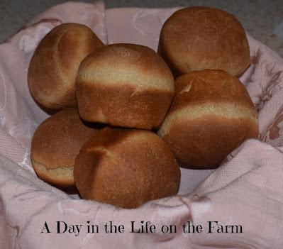 Whole Wheat Dinner Rolls