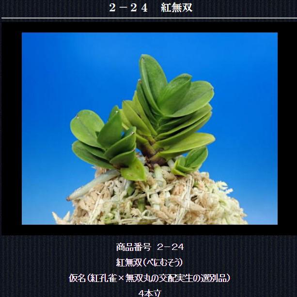http://www.fuuran.jp/2-24.html