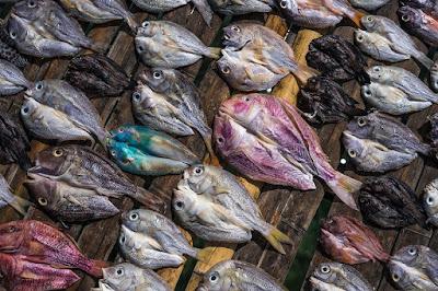 cara masak ikan asin, ikan asin, Kuliner, masakan, tips memasak,