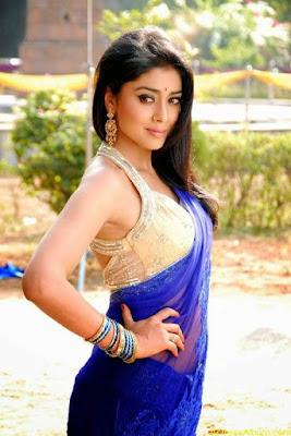 hot images of actress in saree
