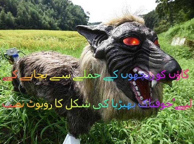 خوفناک بھیڑیا کی شکل کا روبوٹ نصب