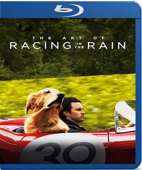 The Art of Racing in the Rain [2019] [BD25] [Latino]