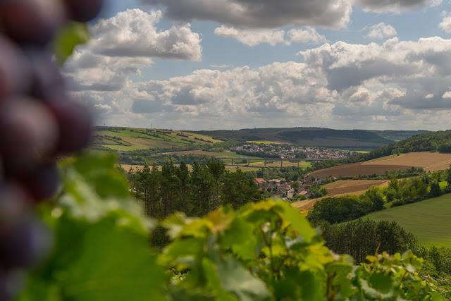Panoramaweg Taubertal Etappe 3 Tauberbischofsheim - Bad Mergentheim 01