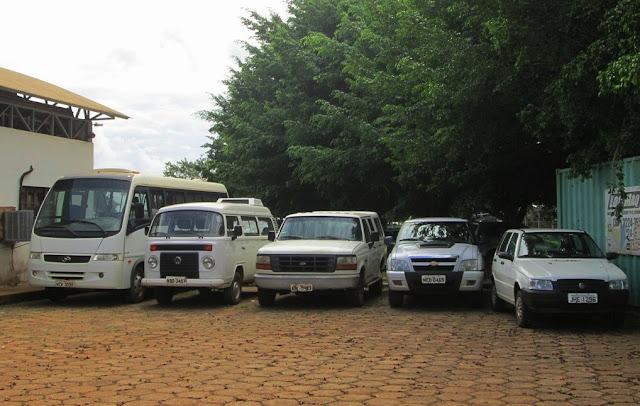 Embrapa Rondônia realiza leilões nos dias 17 e 24 de junho com quase 300 itens