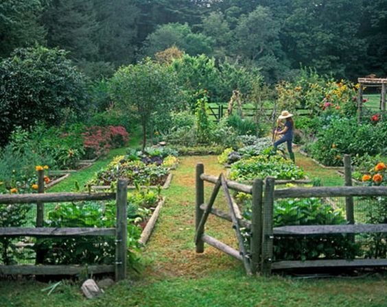 Garden and yard ideas from bloggers i love gardening stuff for Large vegetable garden design plans