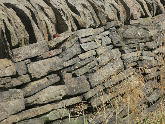 Rusty cog on dry stone wall. Calderdale.