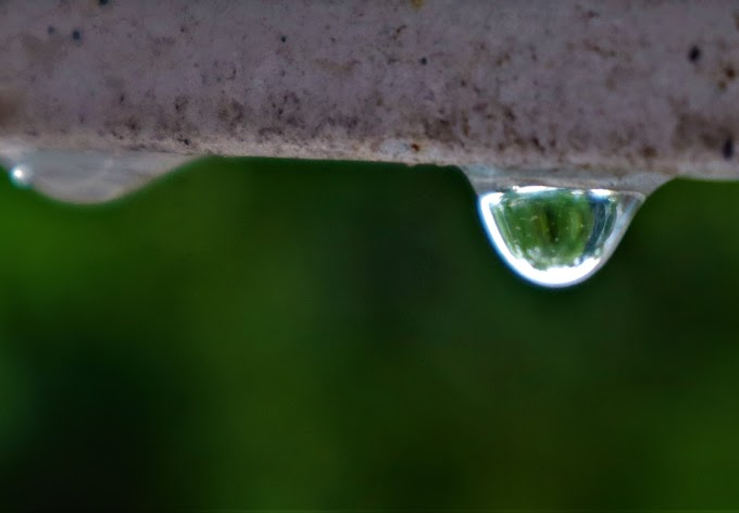 Precious Water Droplet