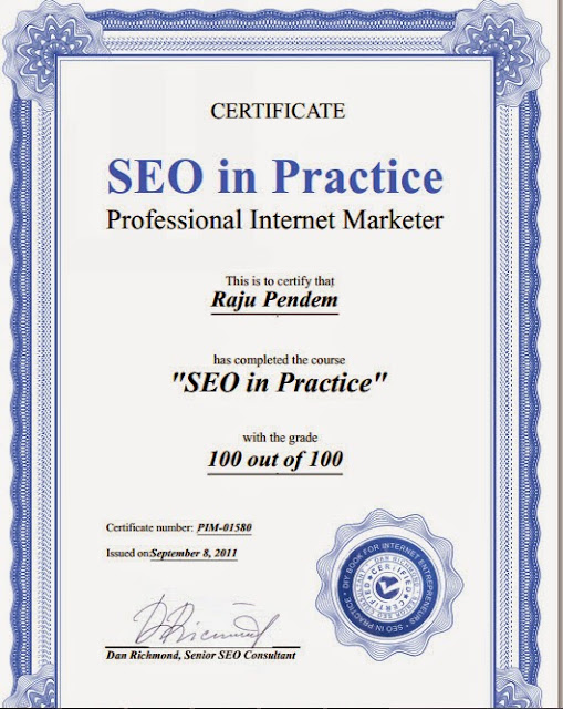 Pendem Raju Professional Internet Marketer Certification from SEO in Practice