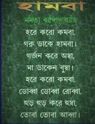 Mamata Banerjee Kobita Hamba (মমতা ব্যানার্জি কবিতা হাম্বা)