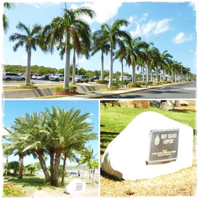 Tortola-airport
