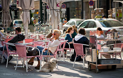 Merisis Vienna for Beginners Viennese Dogs and