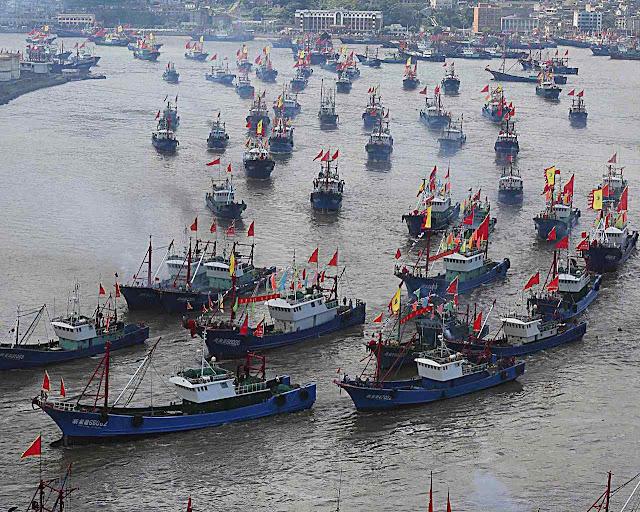 China montou a maior frota pesqueira do mundo, visando a pesca ilegal