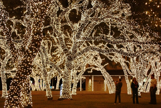 a wonderland of festive lights at pedernales electri co ops headquarters in johnson city texas