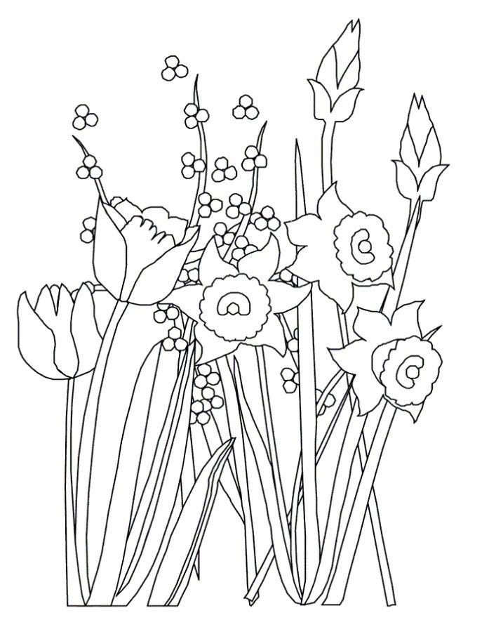 Раскраски деткам: Раскраска весенние цветы