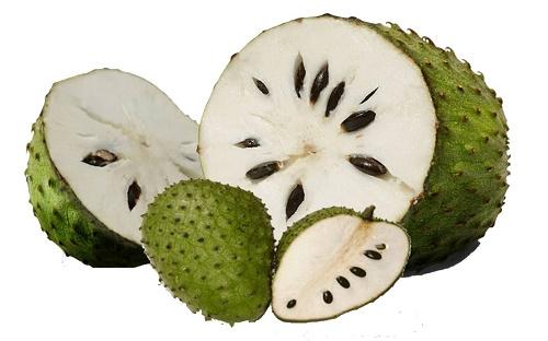 khasiat buah sirsak untuk kesehatan