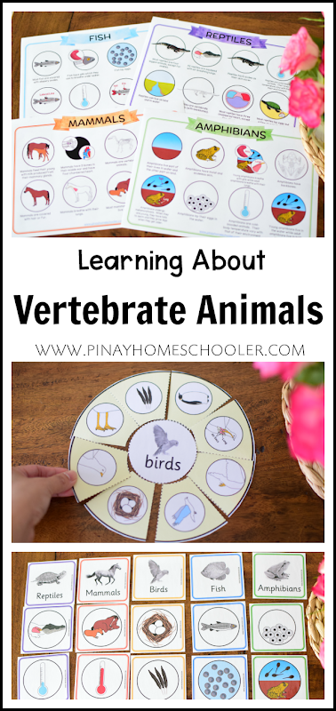 ANIMAL CHARACTERISTICS LEARNING MATERIALS
