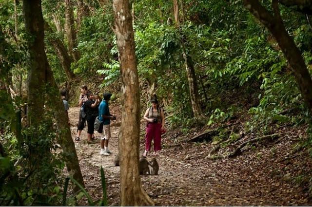 Pangandaran Nature Reserve