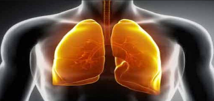 The Cause Of Mesothelioma Cancer You Need To Know