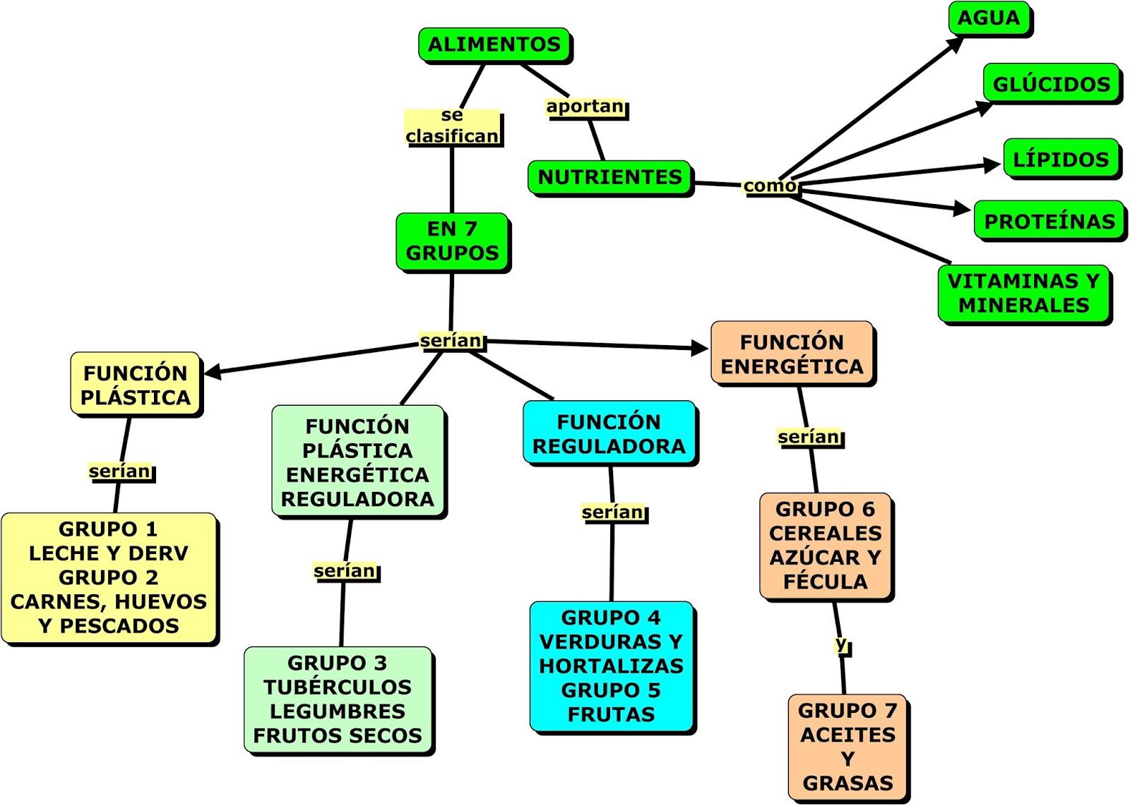 Clasificacion de los alimentos segun sus funciones