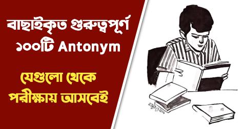 English important Antonym