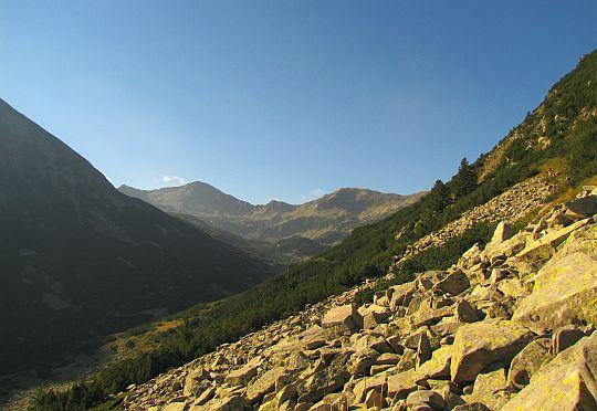 Górna część doliny potoku Bynderica.