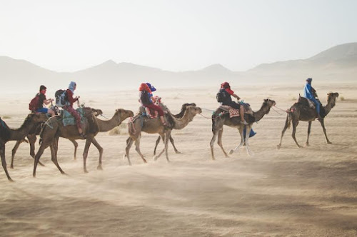 Naik unta di Gurun Sahara