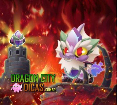 Dragão Fidelidade - Informações