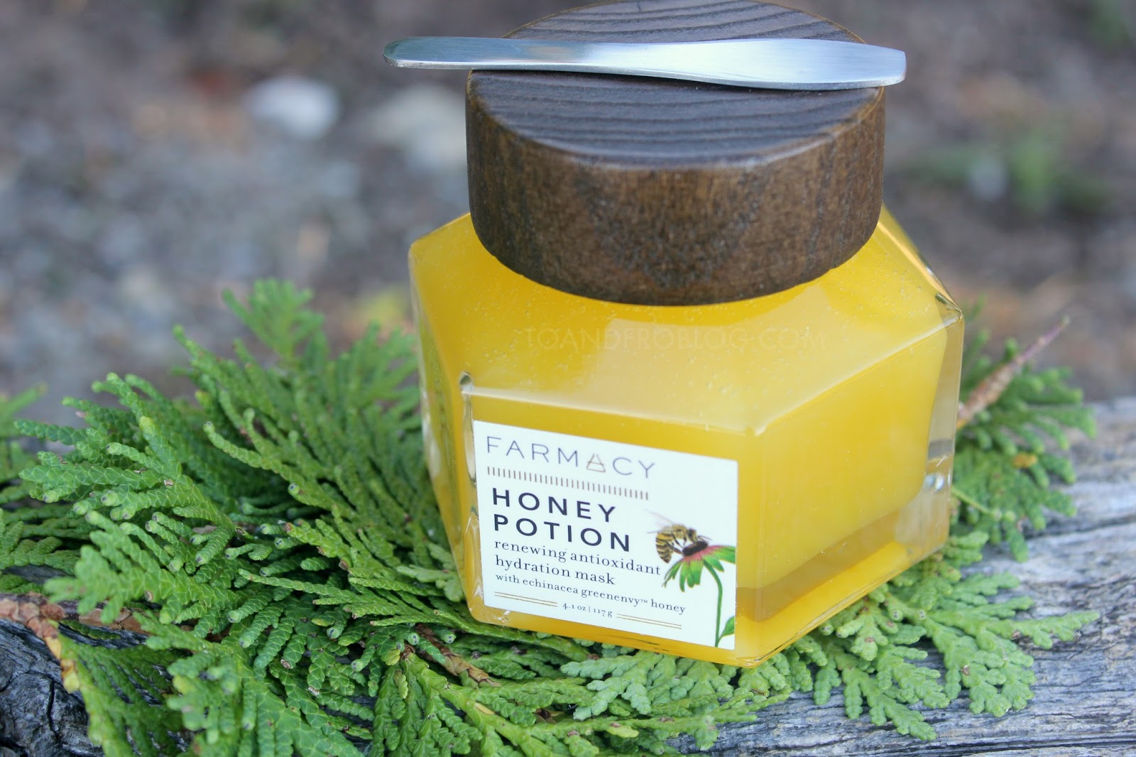 Farmacy Beauty's Honey Potion Review