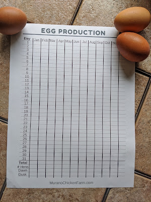 Free egg production sheet, printed out
