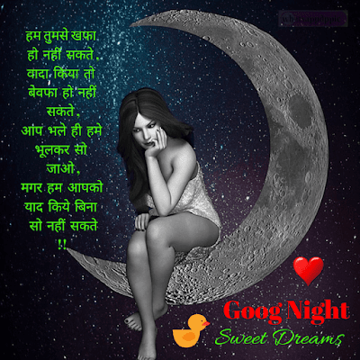 good-night-photo-shayari-hindi