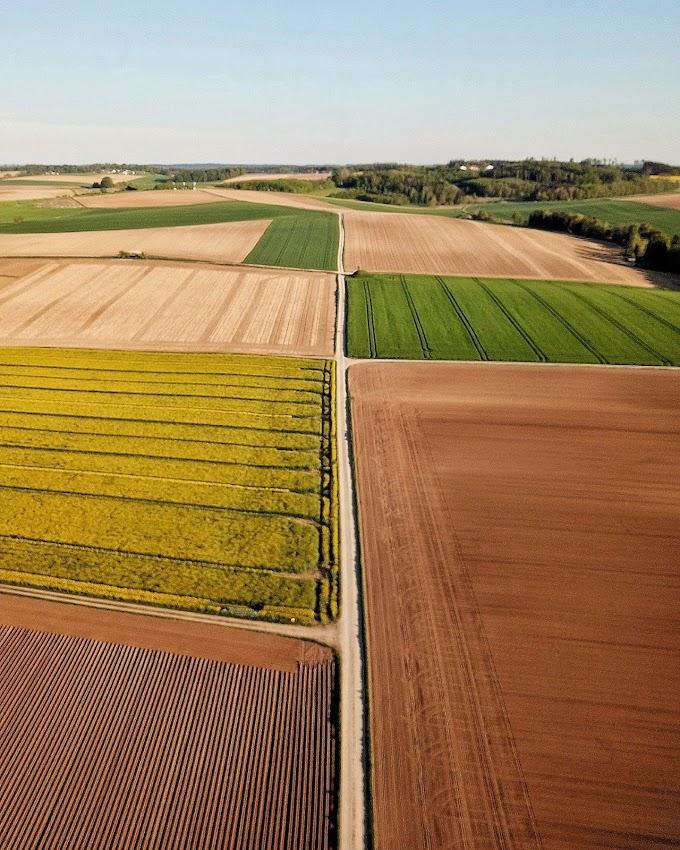 Laporan Praktikum Punyuluhan Pertanian