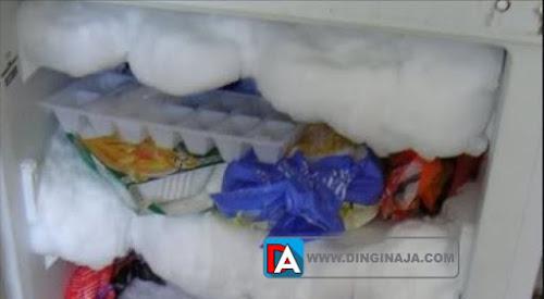Bagaimana mengatasi bunga es pada kulkas