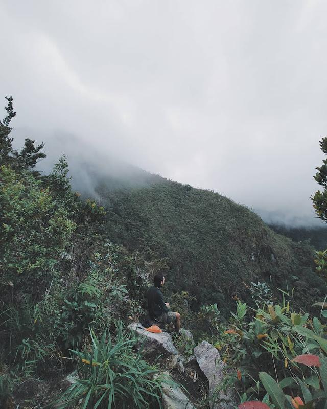 pesagi, gunung lampung