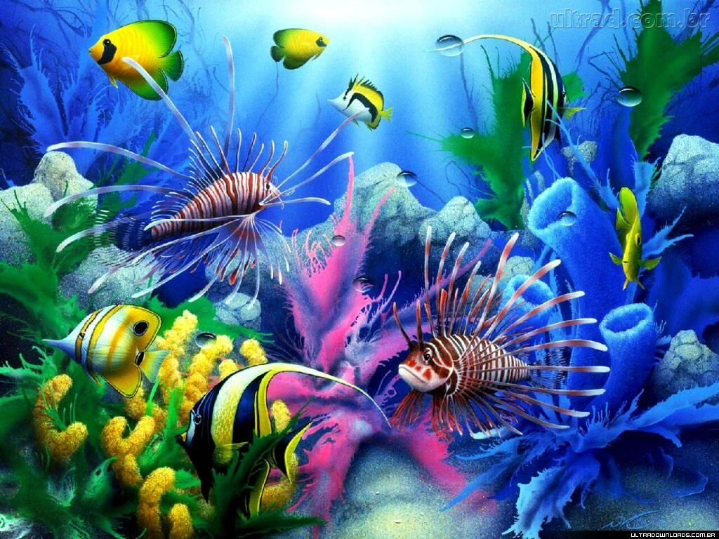 papel de parede de aquario em movimento gratis