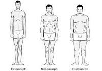 Informasi Rokok: Jenis tubuh manusia