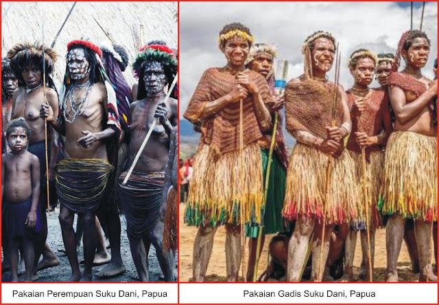 gambar pakaian adat perempuan suku dani