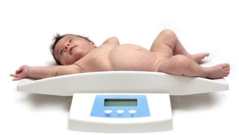 ¿Cuál es el peso promedio de un bebé de 6 meses?