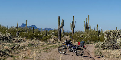Some more T-Dubing on BLM Land and back to Owl Head Buttes