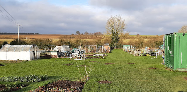 Hungerford Allotments