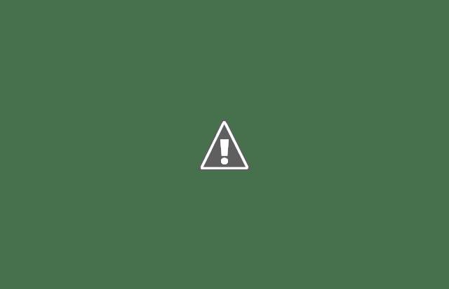 Pourquoi WordPress 5.6 va casser de nombreux sites en Décembre 2020 ?