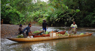 A logboat on a river in Coquí, Columbia. (Fuquen Gomez, 2014:120)