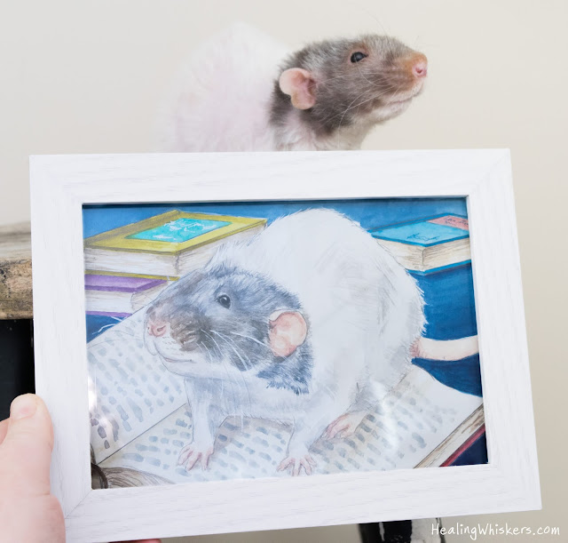 Vincent the therapy rat with a portrait of himself from the illustrated rat