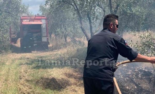 Νέα πυρκαγιά στο Αυλάκι Στυλίδας - Πρόλαβαν πάλι τα χειρότερα οι πυροσβέστες και ο Δήμος Στυλίδας...