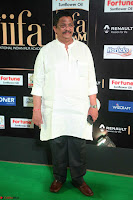 Celebrities sizzling Exclusive Pics at IIFA Utsavam Awards 2017  Day 2  HD Exclusive 43.JPG