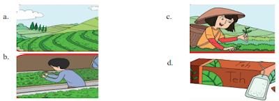 soal tematik kelas 4 tema 4