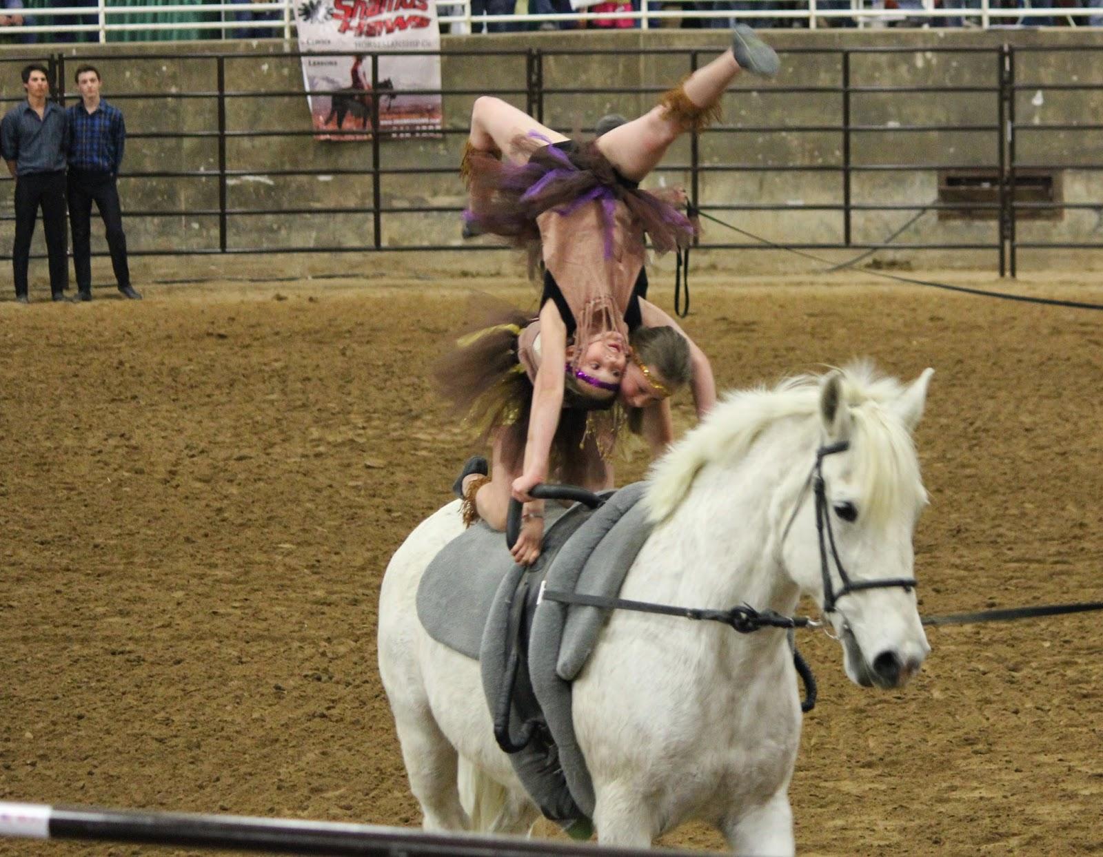 Technique Equestrian Vaulting Club