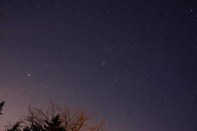 Orion with Sirius
