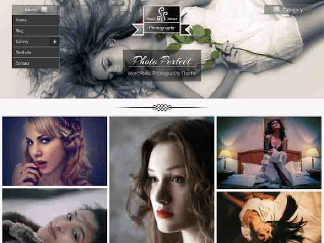 Photo Perfect WordPress Template Free Download