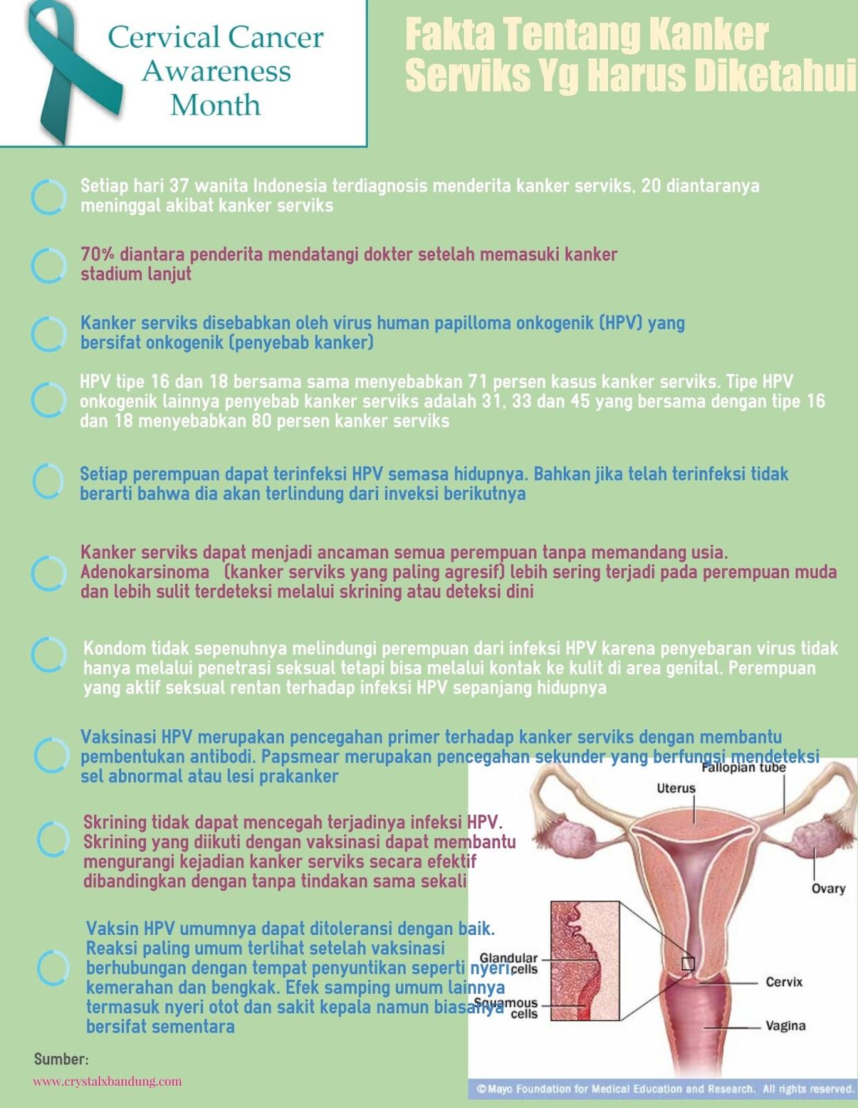 fakta tentang kanker serviks di Indonesia