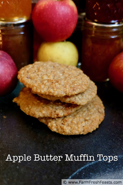 image of a stack of apple butter muffin top cookies